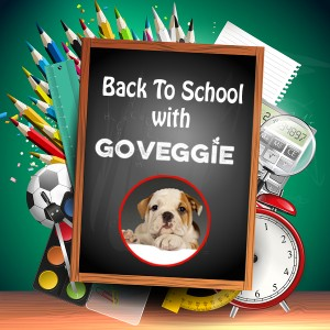 Healthy Back To School Lunches with GO VEGGIE